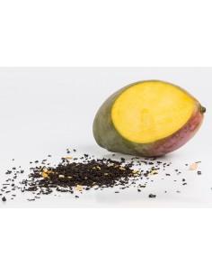 Mango-Tee